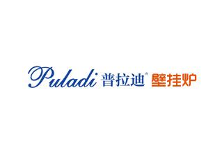 法国普拉迪(国际)集团股份有限公司